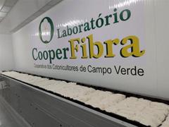 Análise de Pluma de Algodão - Cooperfibra - 2