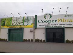 Análise de Pluma de Algodão - Cooperfibra - 4