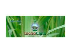 Curso de Capacitação em Cana-de-Açúcar - Agro Analitica