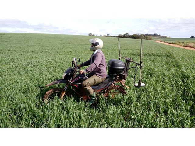 Agricultura de Precisão SENSOR ÓPTICOS (NDRE) - CAPAL - 1