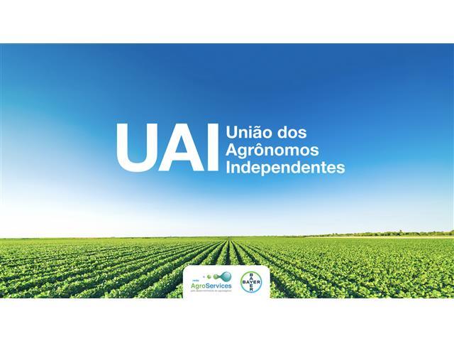 Programa UAI