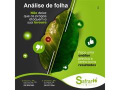 Analise Foliar - Safrar