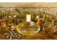 Perfume Deo Colônia Amburana L'Occitane au Brésil 100ml - 2