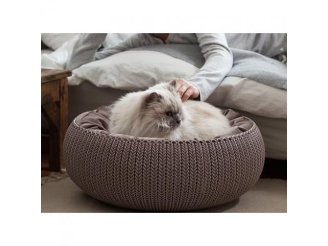 Cama Curver Cozy Pet Knit Sandy com Almofada - 2
