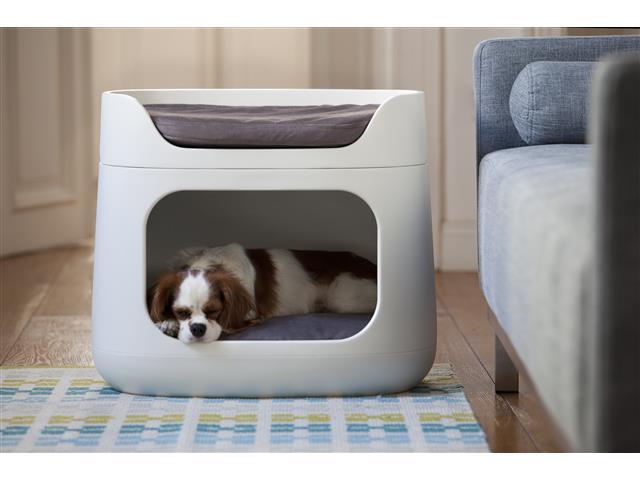 Cama Puff Bunkbed Pet Curver Sandy com Almofada e Transporte - 4