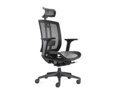 Cadeira Airys Presidente - 0