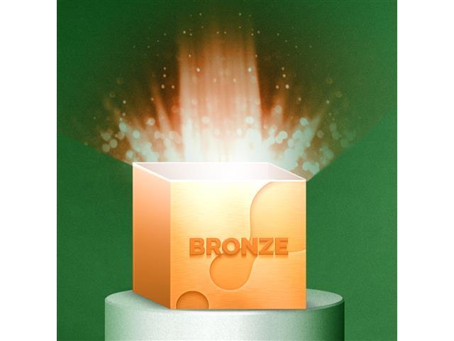 Caixa de Benefícios Bronze 110V