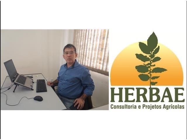 Diagnóstico de Plantas Daninhas - Marcos Kuva