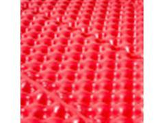 Colchoneta Corus Foam Matt Rojo V20 - Talla Unica - 2