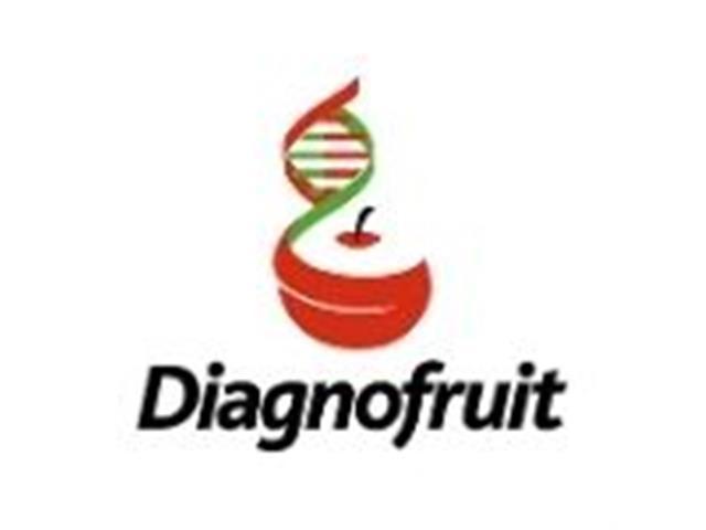Diagnóstico Fitopatológico con Perfil Genético - Diagnofruit