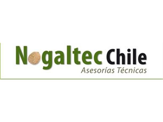 Evaluación de la factibilidad técnica cultivo de nogales - Nogaltec