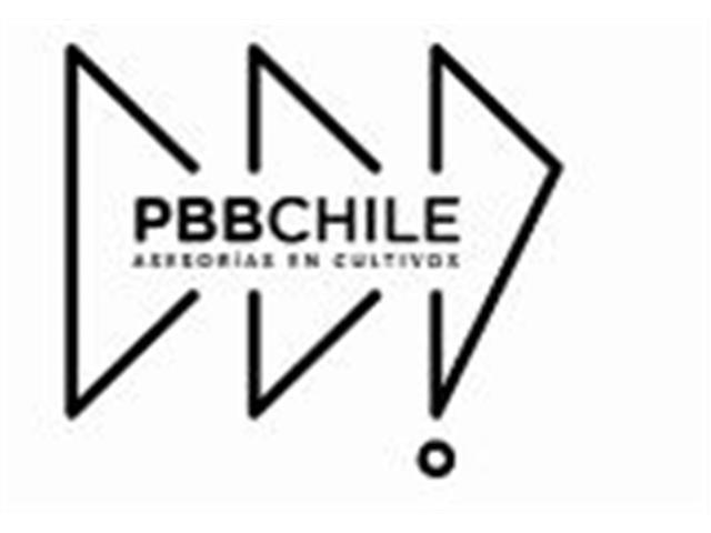 Asesoría técnica cult. extensivos, industriales&semilleros - PBB Chile