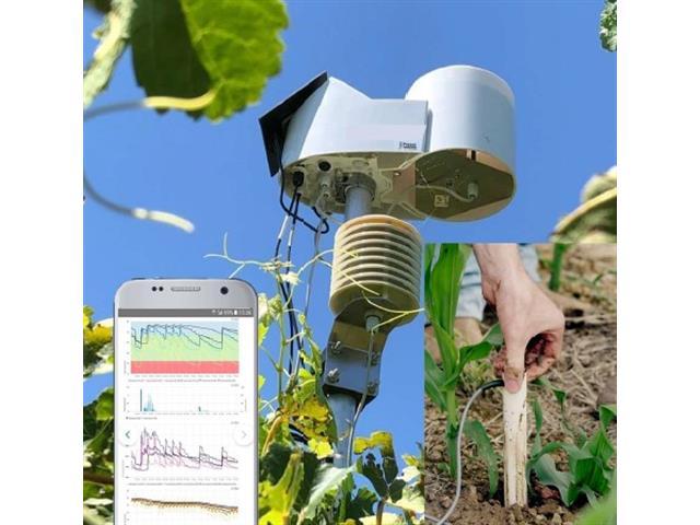 Monitoreo de Clima y Suelo Básico con sonda 60 cm
