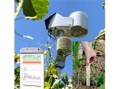 Monitoreo de Clima y Suelo Básico con sonda 90 cm - 0