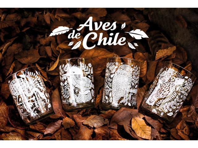 Set 4 vasos GREEN GLASS Aves de Chile de 330 ml