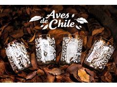 Set 4 vasos GREEN GLASS Aves de Chile de 330 ml - 0