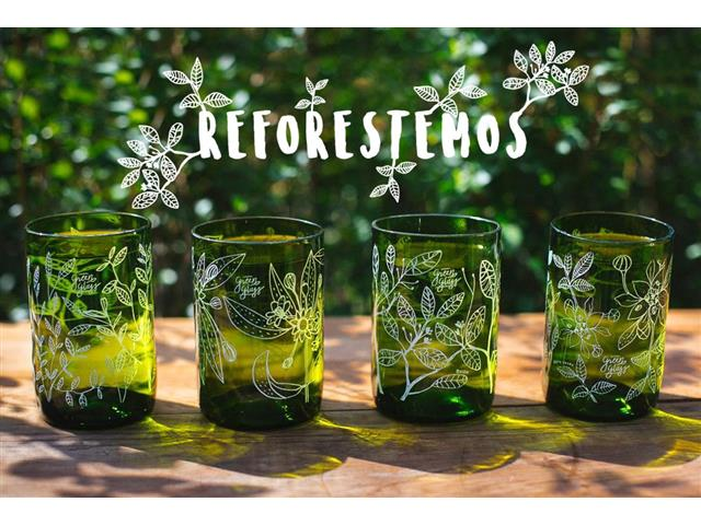 Set 4 vasos GREEN GLASS Reforestemos de 330 ml