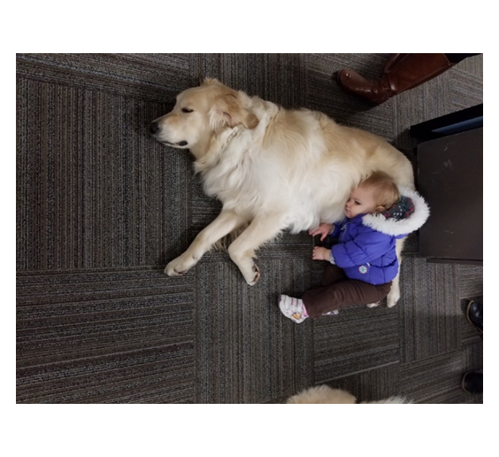Makenzie Adams enjoys a short nap while after discussing our new approach to PFAS detection.