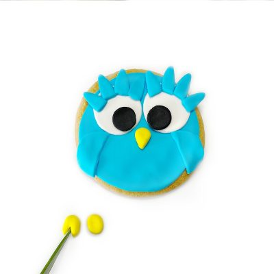 OwlCookies13.jpg?mtime=20200423083101#asset:311528:marketingBlocks