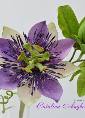 Catalina-Anghel-azucararte-Sugar-Flowers-4.JPG#asset:18262:paletteImage