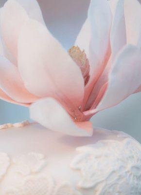 Mirjam-Saner-Mimis-Cupcakes-Wedding-Elegant-7-2.jpeg#asset:18319:paletteImage