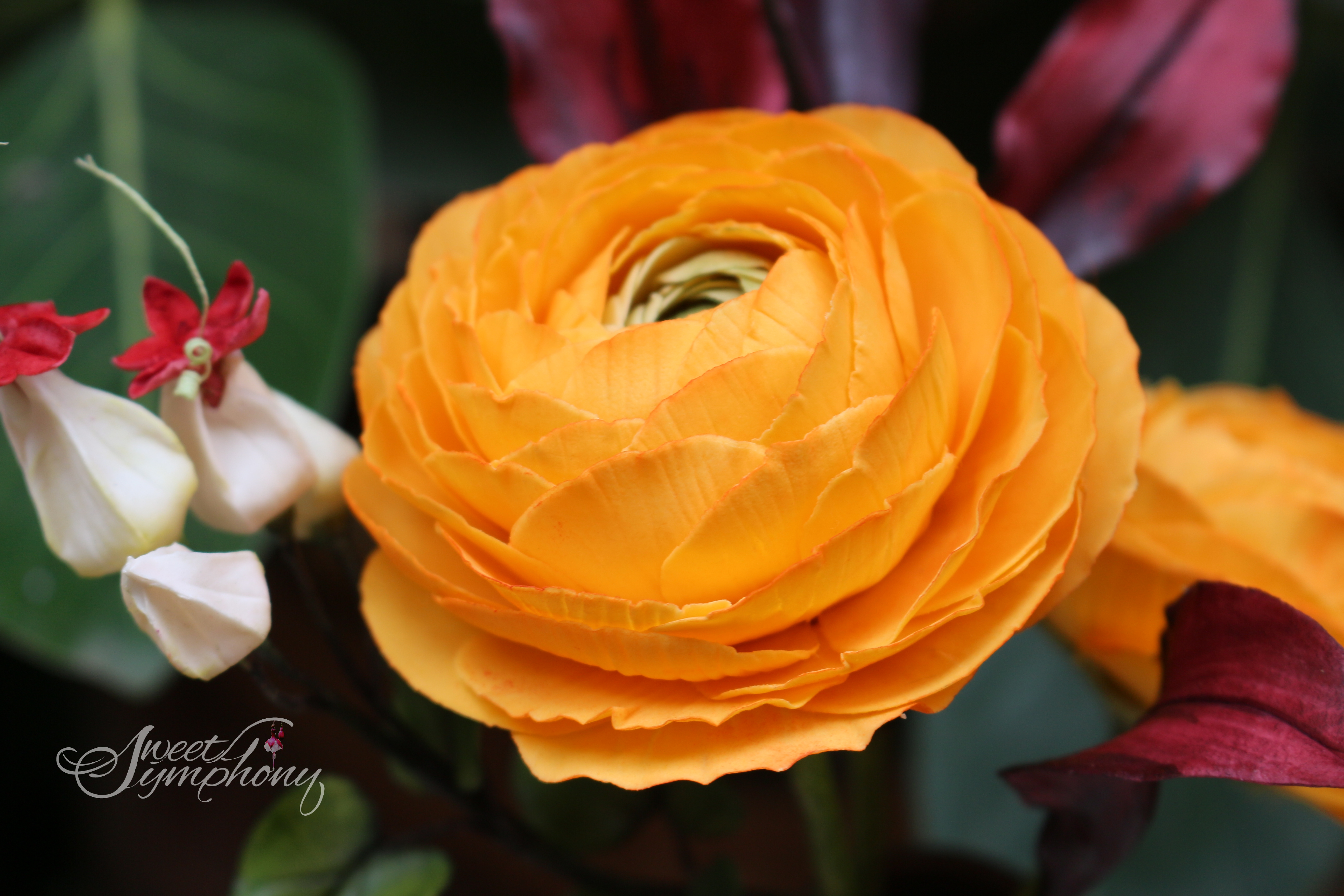 Orange sugar flower