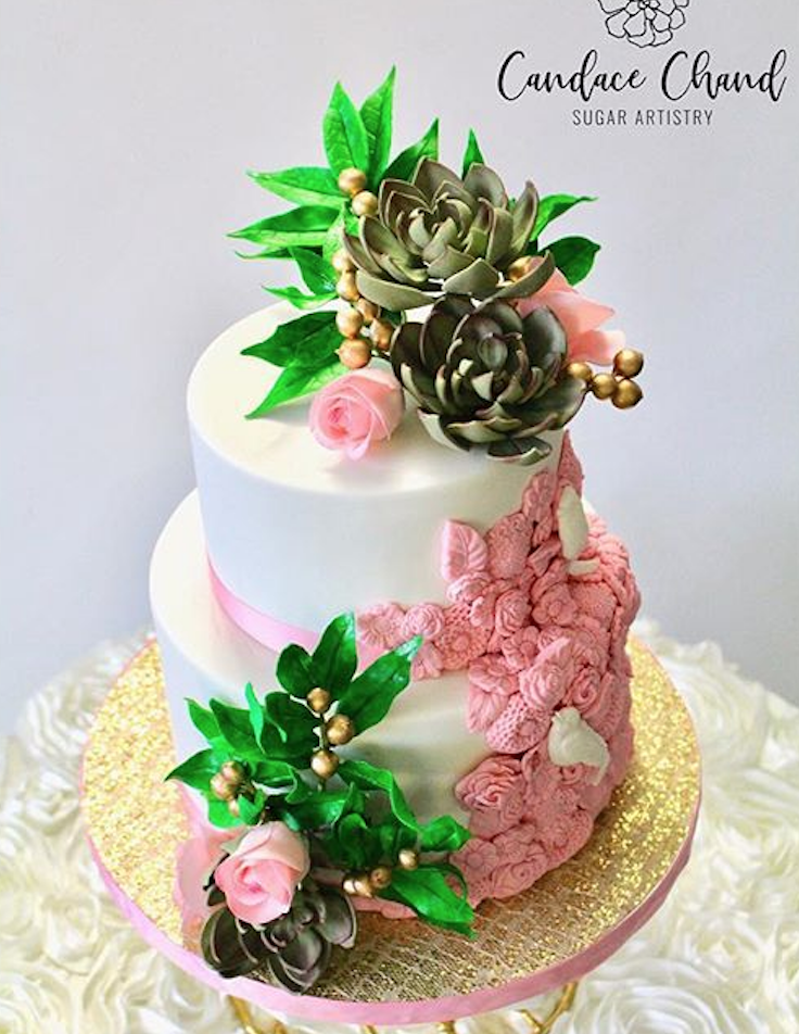 White fondant cake with green succulents