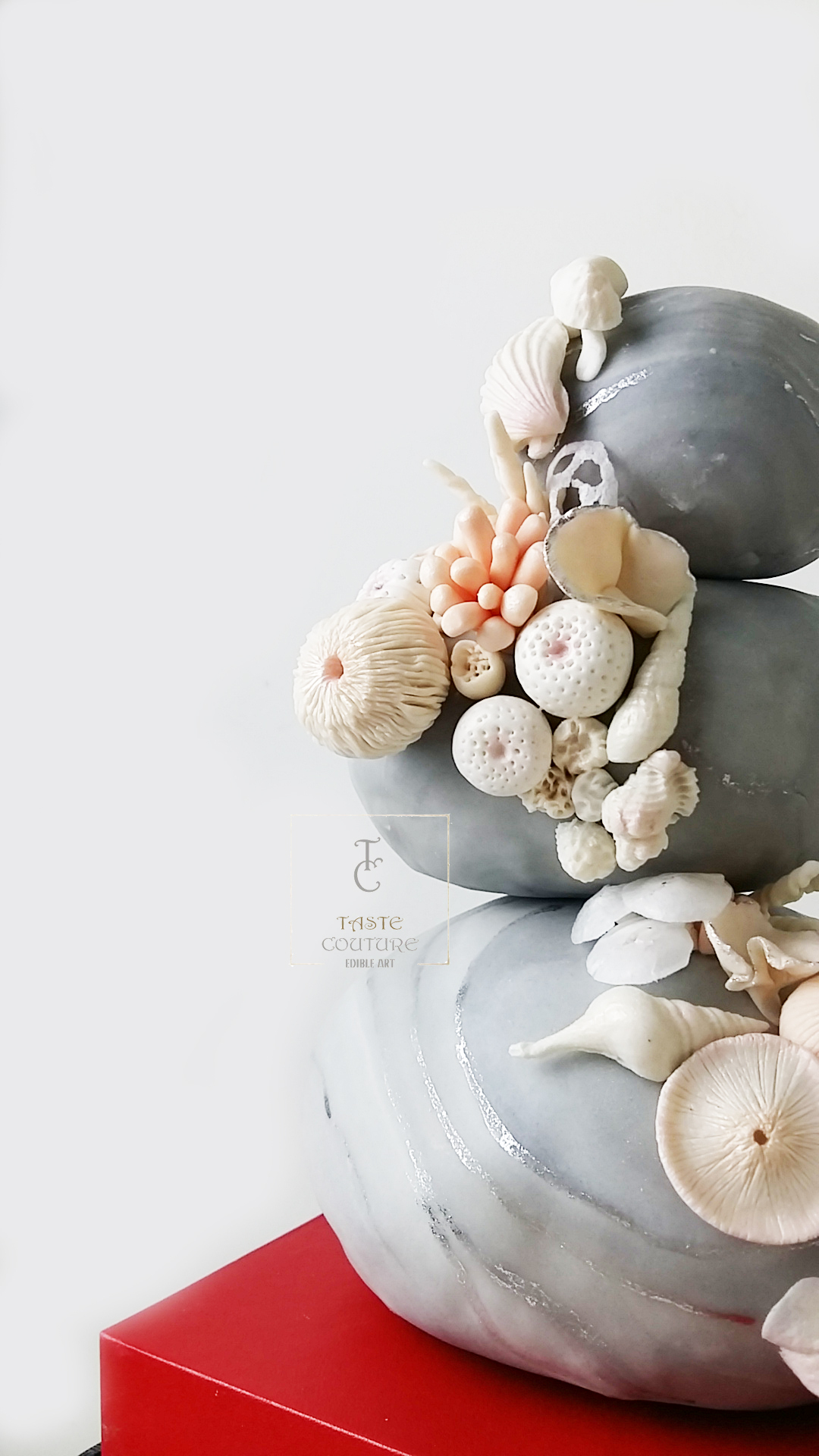Gray stone fondant cake with seashells