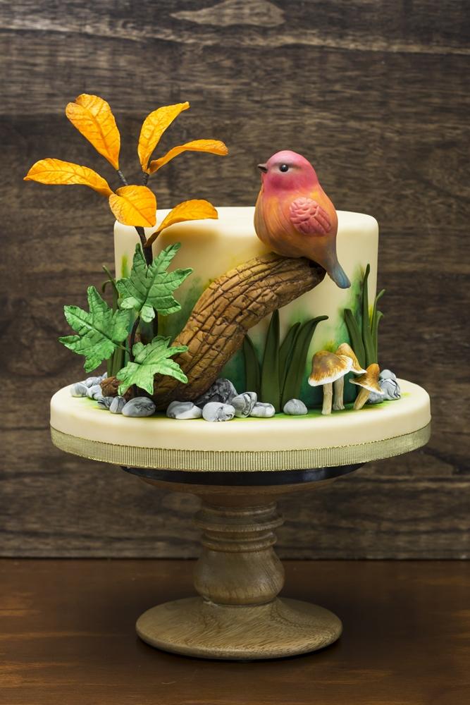 Tropical bird cake