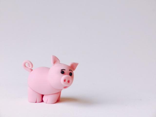 Baby pink pig