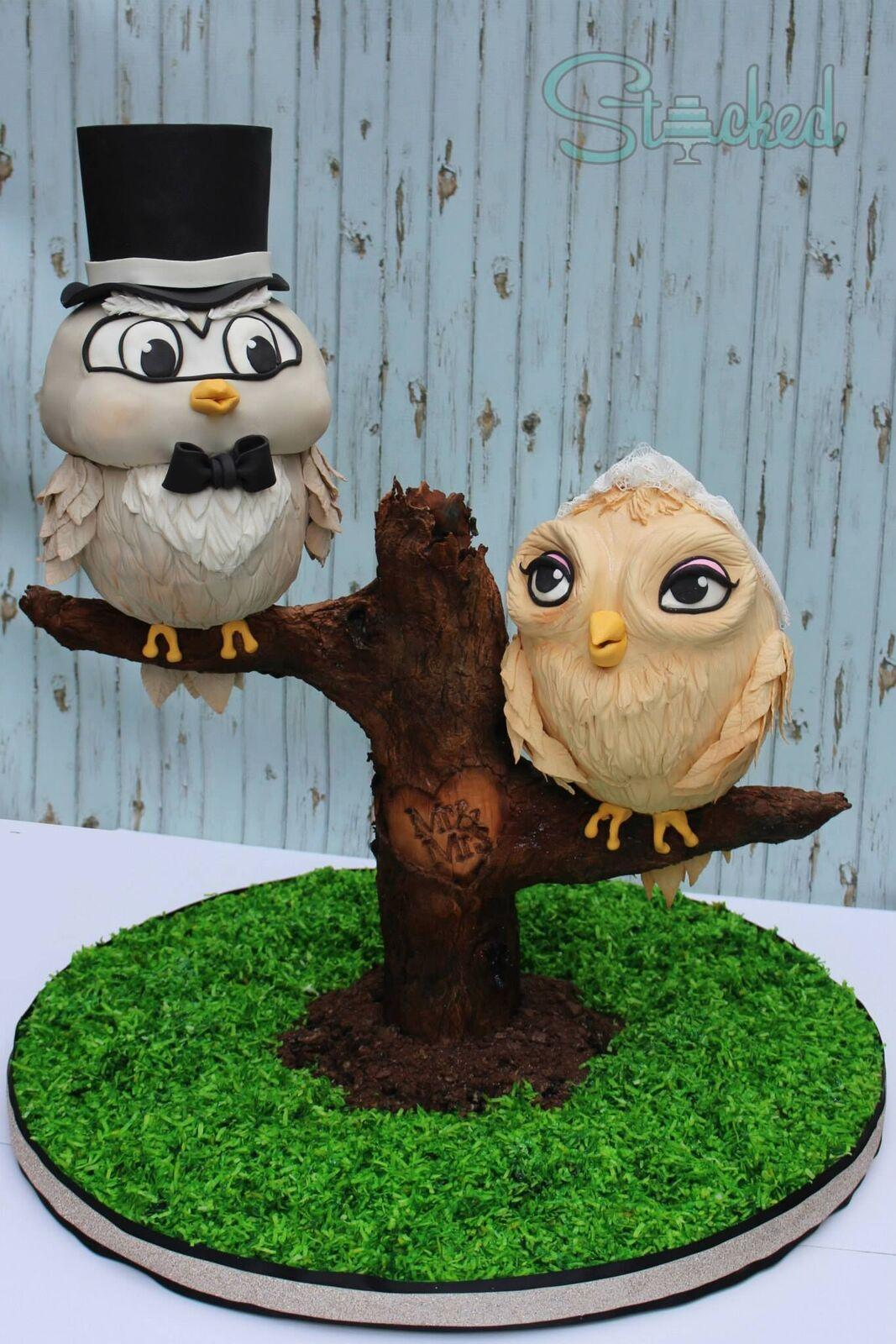 Owl Love birds on a branch