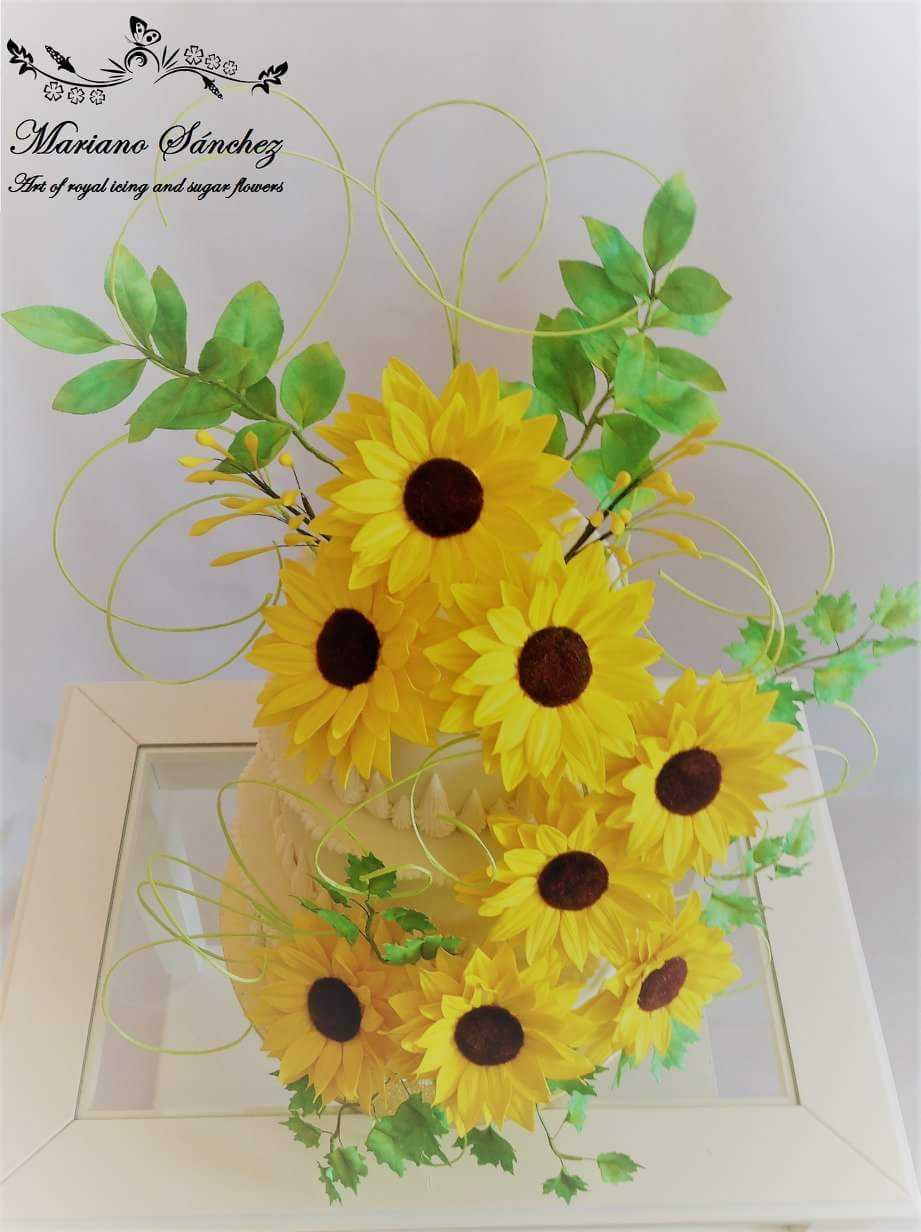 Yellow sun flowers