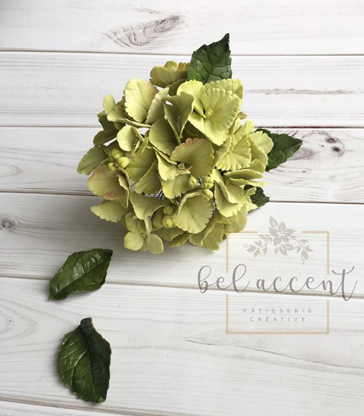 Bouquet of Bright green sugar flower hydrangeas