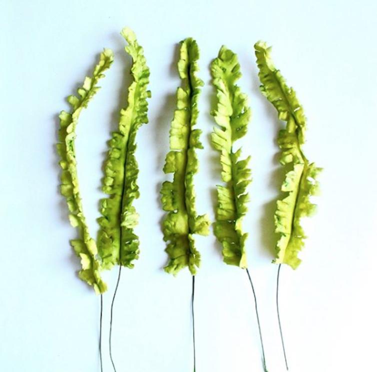 Gum Paste Ferns