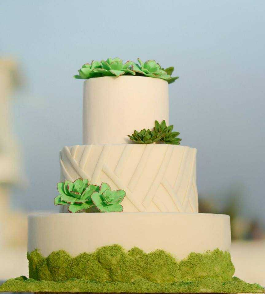 White wedding cake with bright green succulents