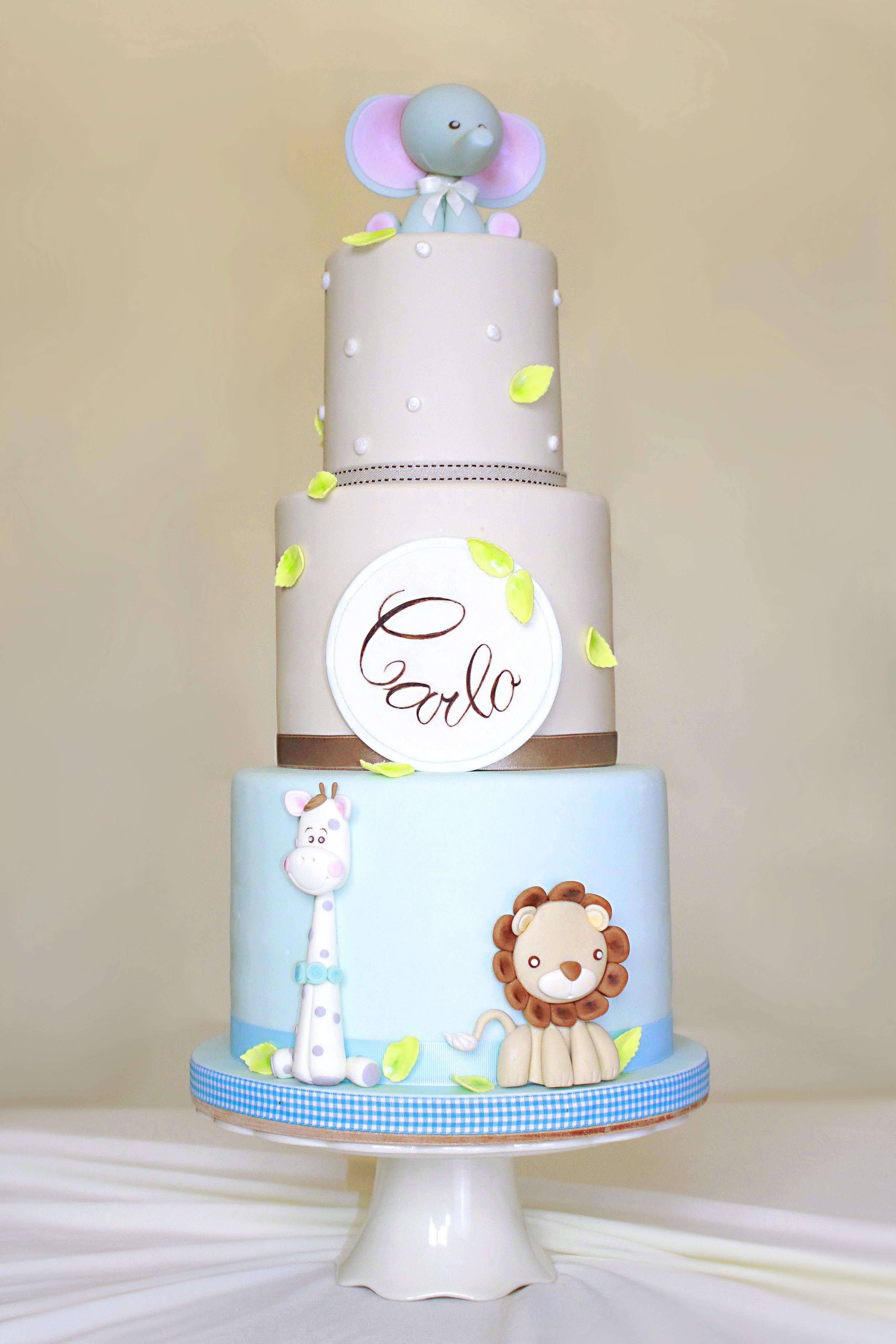 Animal Baby cake