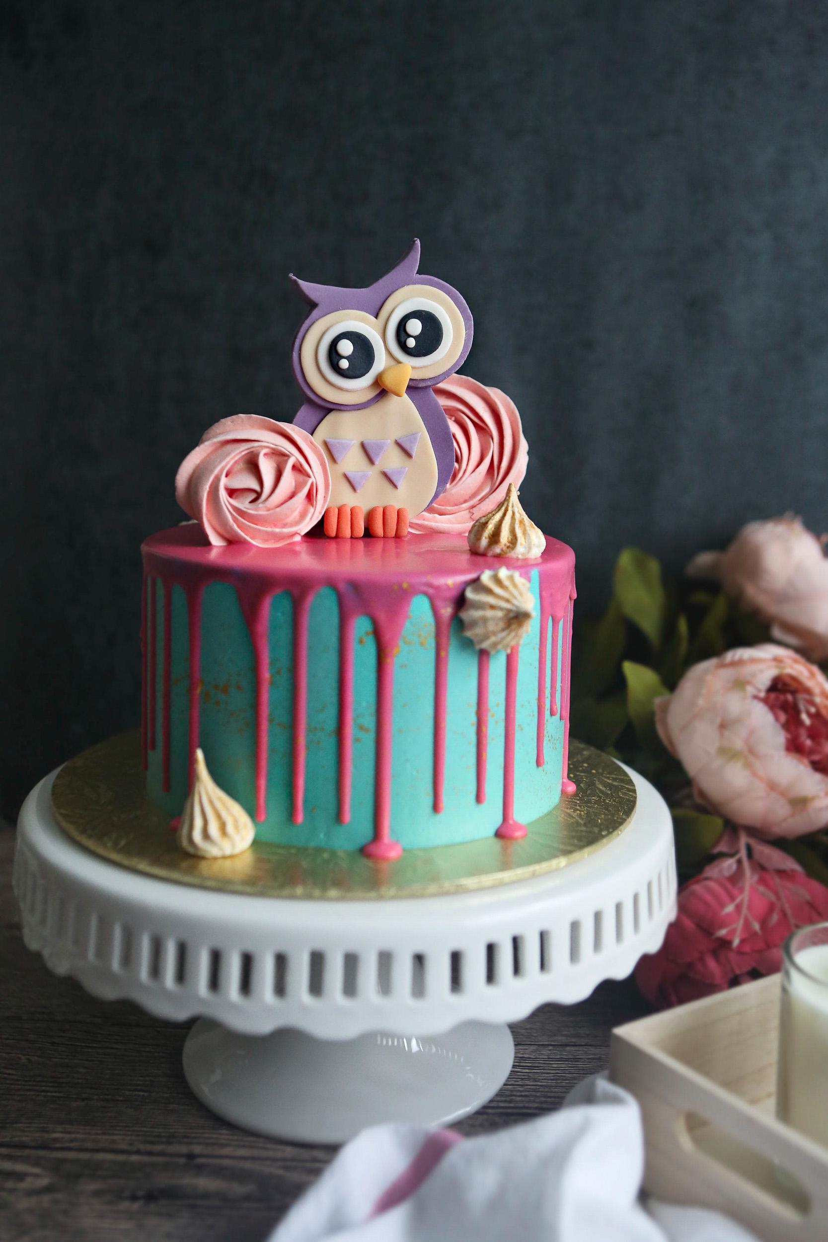 Fondant woodland owl birthday girl drip cake