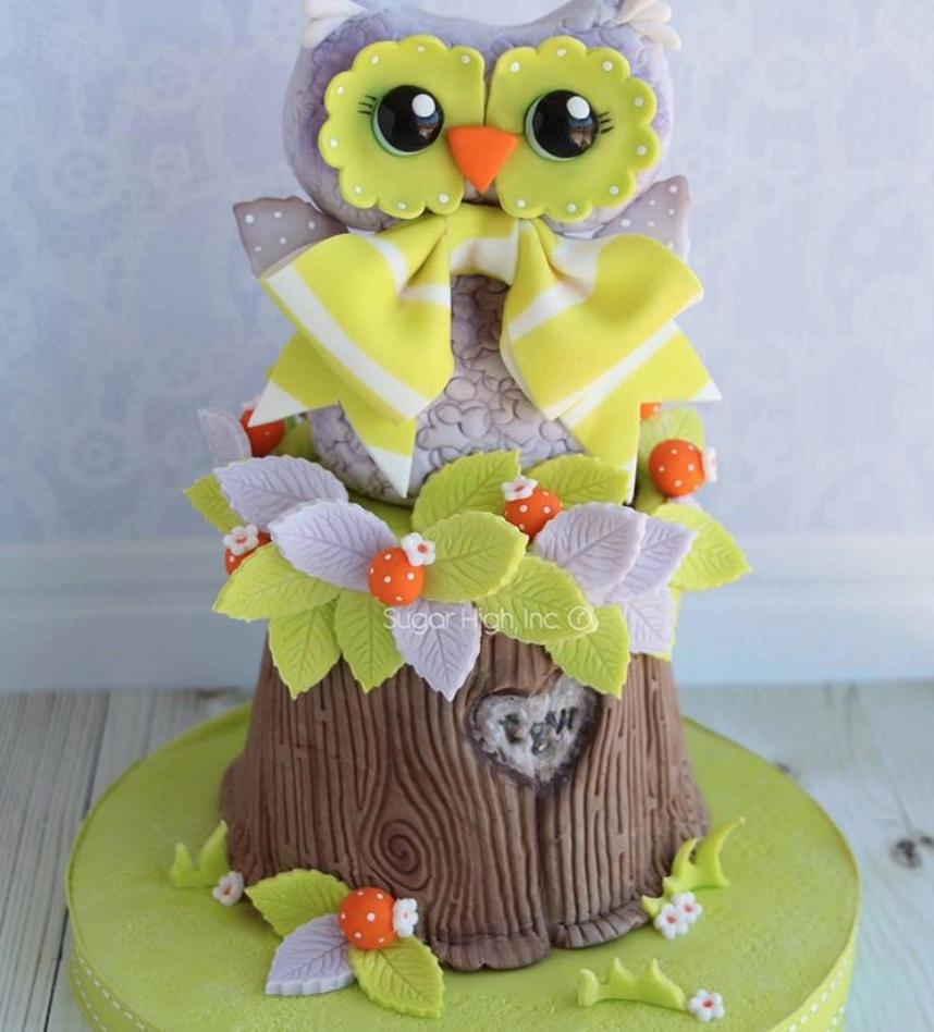 Woodland owl cake