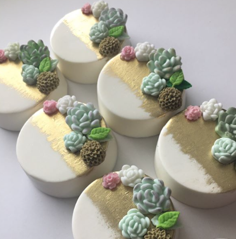 Chocolate covered cookies with gum paste succulents