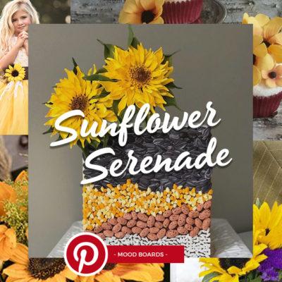 Sff 10 25 Am Sff Boards Pinterest Sunflower Serenade 10 25