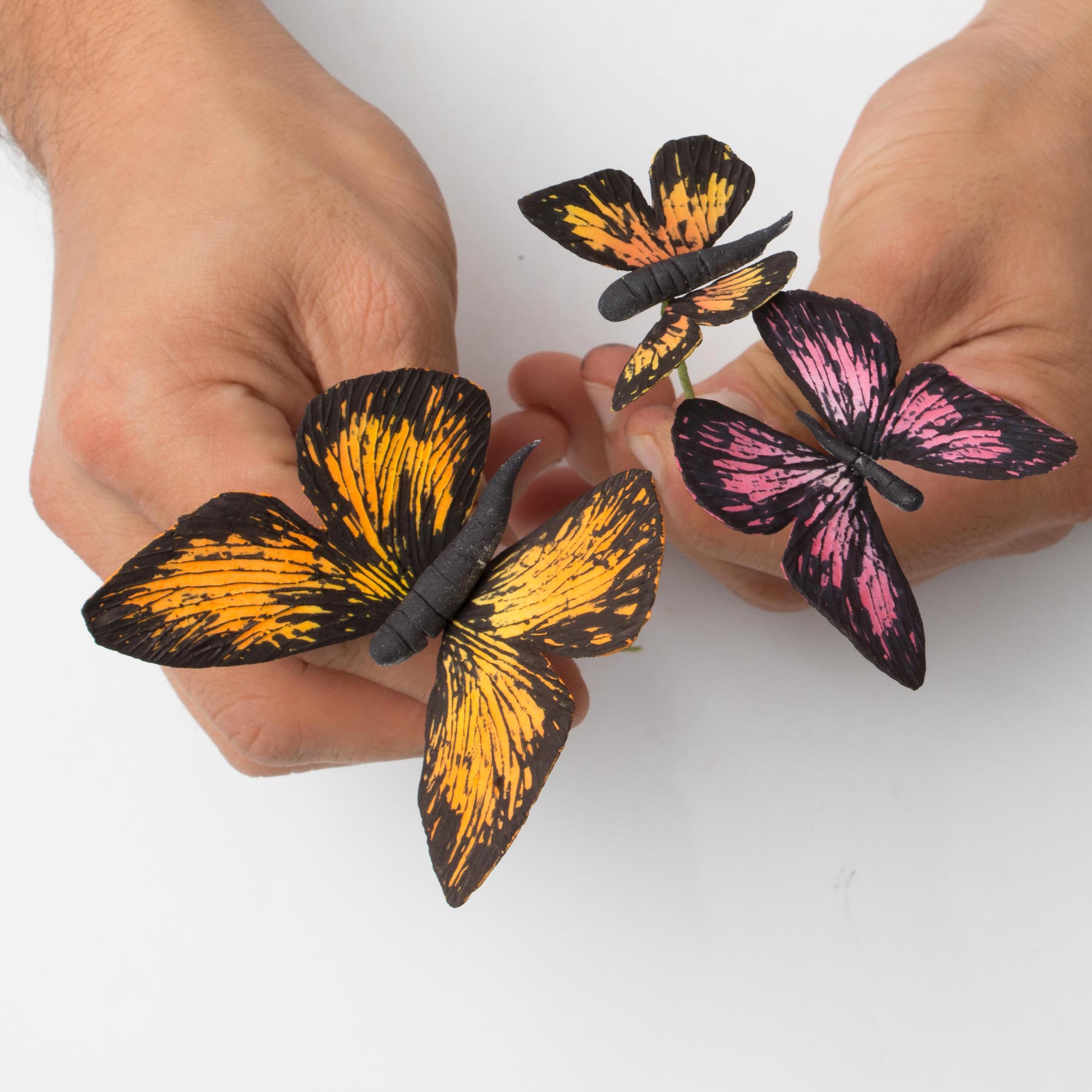 Butterfly_Tutorial_Hero.jpg?mtime=20200708121827#asset:334702