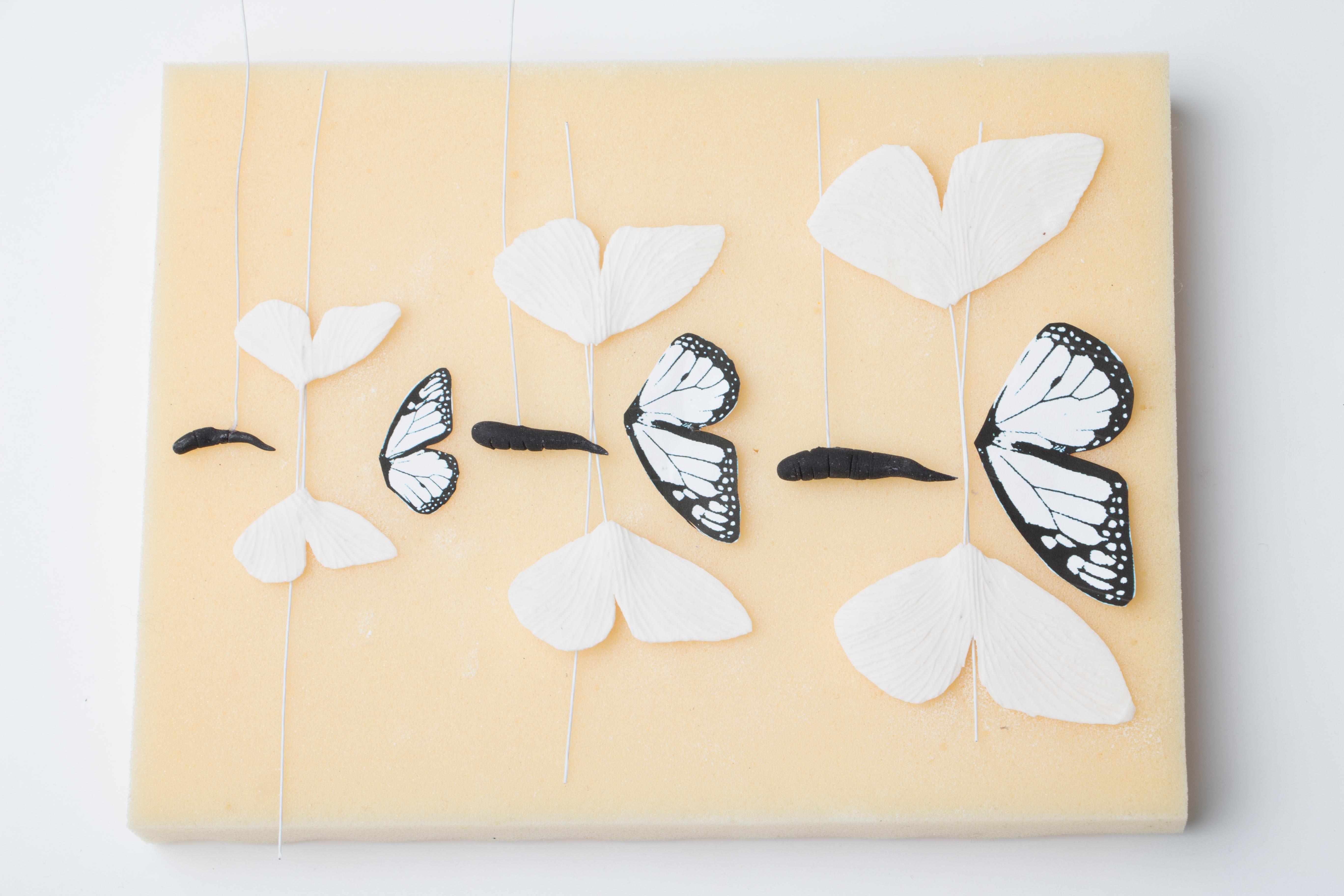 Butterfly_Tutorial_Step-14.JPG?mtime=20200708122616#asset:334716