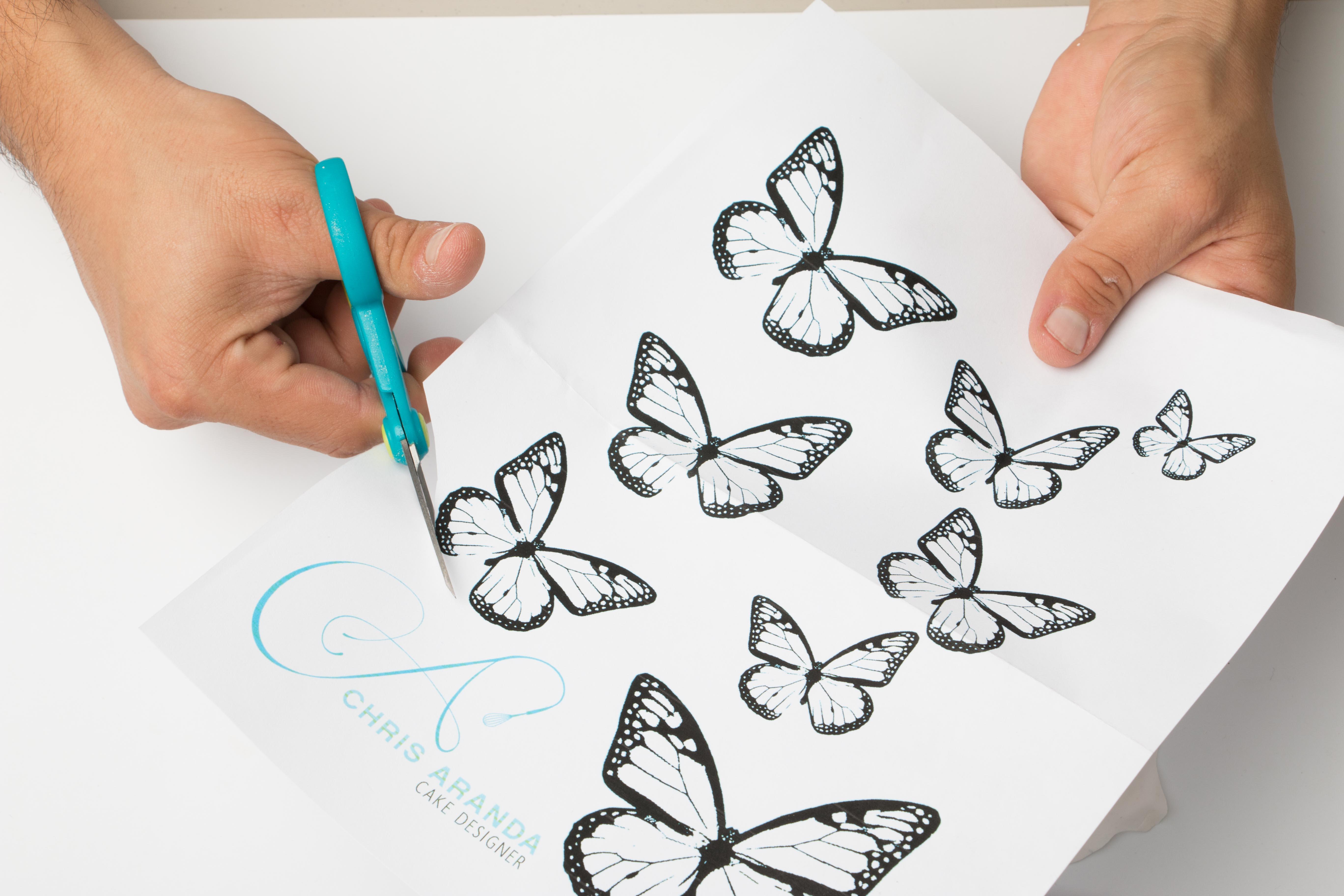 Butterfly_Tutorial_Step-6.JPG?mtime=20200708122428#asset:334708