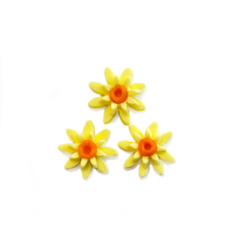 Flower_Tut_Daffodil_8.jpg?mtime=20210304094311#asset:417178