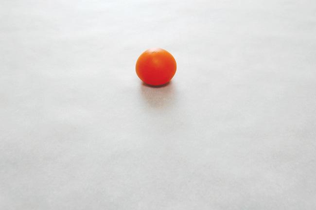 Mini-Pumpkin-1.jpg#asset:11979