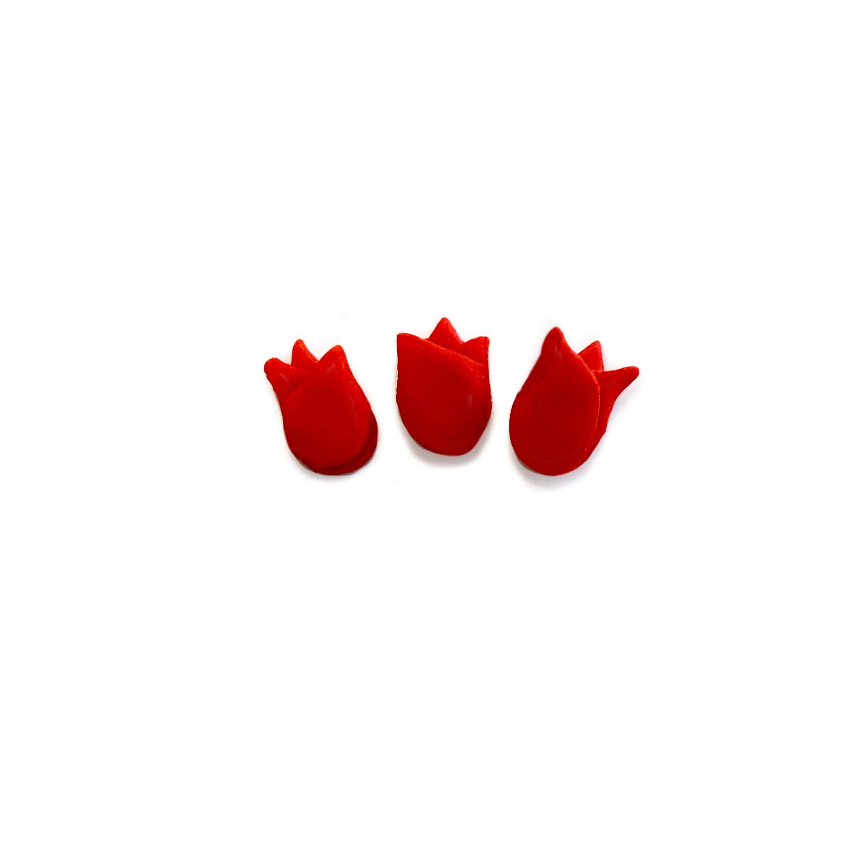 Tulip_Flower_tut_6.jpg?mtime=20210304101448#asset:417199