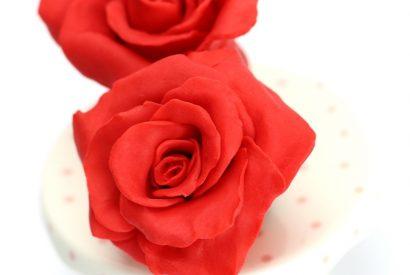 sff_tutorial_strawberryFlower_modelingChocolate_step5.jpg?mtime=20200131101223#asset:278459:homeTutorialTile