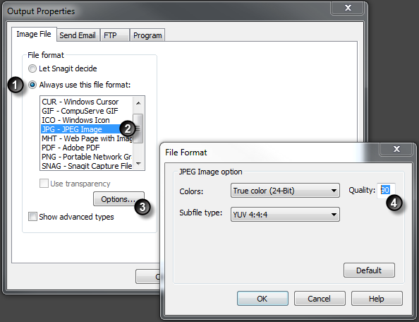 how to use snagit 9