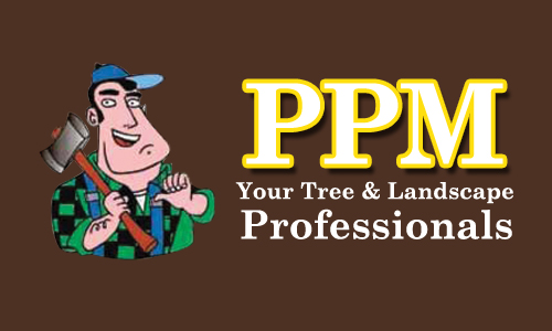 PPM - Perfect Property Maintenance Coupons