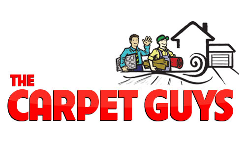 The Carpet Guys Coupons in Troy, MI